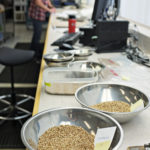 Grain being inspected at a CGC licensed facility