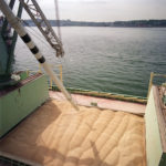 Grain being loaded onto a vessel at Vancouver Fraser Port Authority